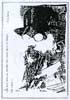 Stamp 7