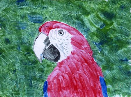 Parrot postcard by Lezbag