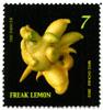 Freak Lemon